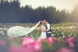 Wedding in our Peony Fields